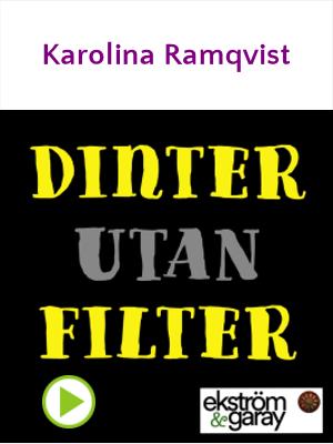 Dinter utan filter - Karolina Ramqvist