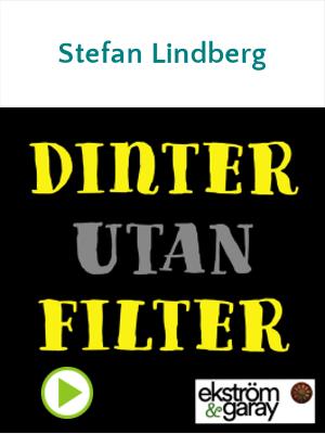 Dinter utan filter - Stefan Lindberg