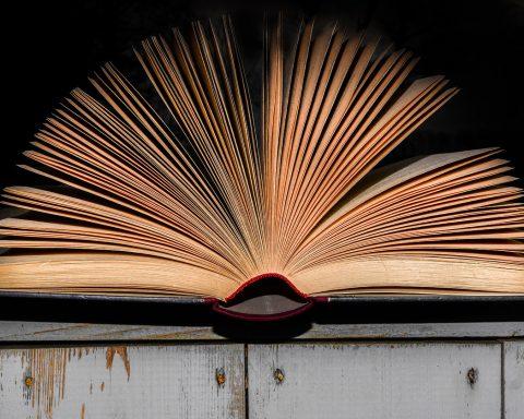 bok-böcker-litteratur
