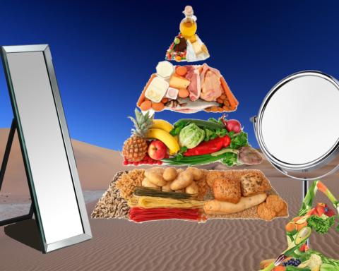 mat_kostcirkel_näringskedjan