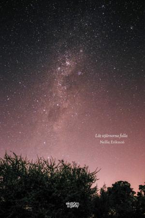 Nellie Eriksson - Låt stjärnorna falla